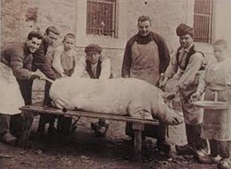 Germà Antoni Fajas en el ritual de la matança del porc. Any 1924